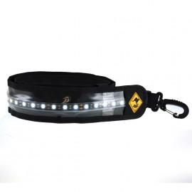 12V Portable Lights